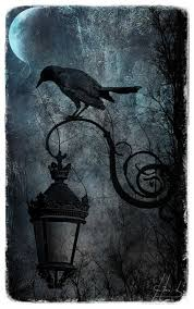 halloween raven background black and white
