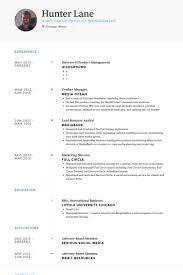 director of product management resume samples visualcv resume
