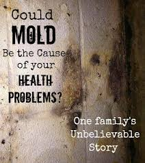 What Causes Mould In Bathrooms Black Mold Symptoms Could Mold Be Your Problem One Family U0027s Story