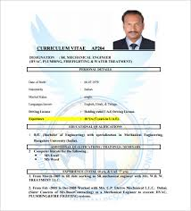 resume exles for jobs pdf to jpg sle of cv and resume pdf cv resume sle pdf job resume