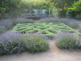 Herb Garden Layout Ideas by Knot Garden Design U2013 Plants To Use For Herb Knot Gardens