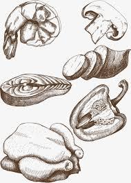 food sketch shrimp mushroom green pepper png and vector for