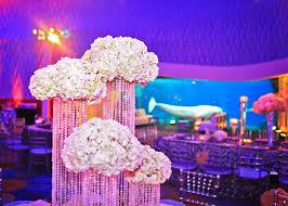 Georgia Aquarium Floor Plan by Tiffany Cook Events Rams Te Jared Cook Marries Lana Cook In