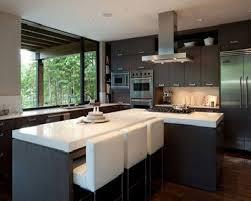 Kitchen Magnificent Shining Kitchen Design Ideas For Small Galley Interior Design Kitchen Ideas Home Designs Ideas Online
