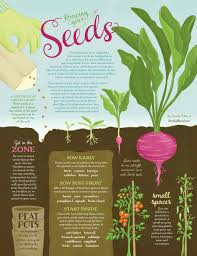 What Are The Gardening Zones - knowing your seeds edible cape cod