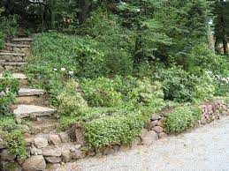 Steep Hill Backyard Ideas Slope Landscaping Ideas For Backyards Residential Slope