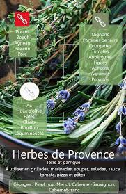 les herbes de cuisine 542 best herbes de provence images on cocktail recipes