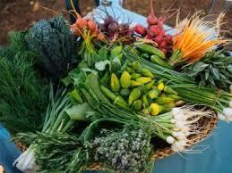 farm to table dinner kendall jackson wine estate farm to table dinner series 2017