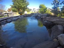 small backyard pond c e pontz sons landscape contractors