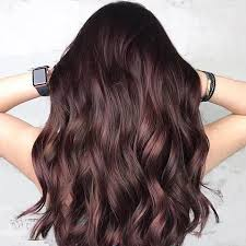 the latest hair colour techniques tiger eye the latest hair color trend salon vim leading hair