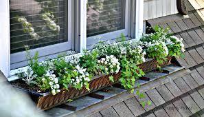 window planters indoor window box planters with brackets ideas diy planter
