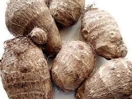 image of gabi or taro rootcrops