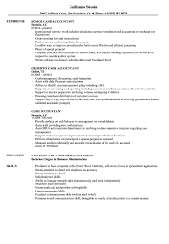resume objective exles general accountant roles allocation cash accountant resume sles velvet jobs