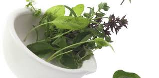 les herbes de cuisine quiz food les herbes aromatiques cuisine actuelle