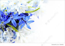 Image Of Spring Flowers by Spring Flowers Background