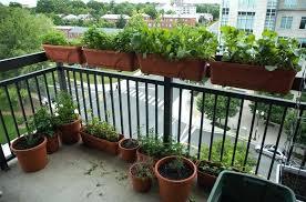 Small Apartment Balcony Garden Ideas Small Porch Garden Ideas Hydraz Club