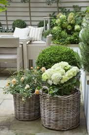 best 25 miniature gardens ideas on pinterest mini gardens