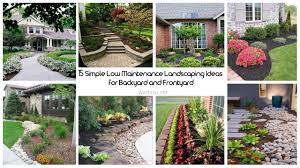 15 simple low maintenance landscaping ideas for backyard and