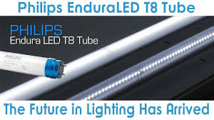 goodmart philips enduraled t8 lamp is an excellent led choice for