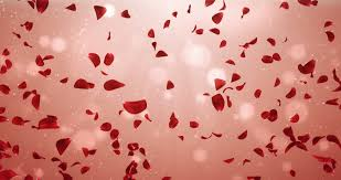 wedding anniversary backdrop flying light flower petals backdrop ideal for