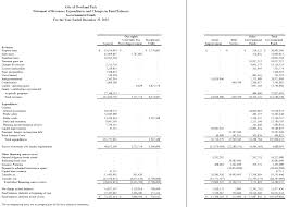 Financial Statement That Reports Revenues And Expenses by The Basic Financial Statements Financial Strategy For Public