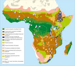 africa map review human subsistence and land use in sub saharan africa 1000 bc to