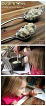 Projects To Do At Home by 89 Best Science Fair Projects Images On Pinterest Science