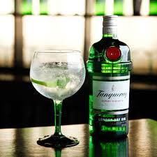 martini gin tanqueray gin buy with next day delivery 31dover