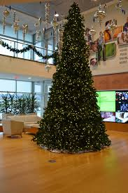 home survival skills put up your christmas tree http blog