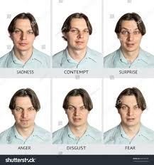 contempy chart six basic human microexpressions caucasian stock photo