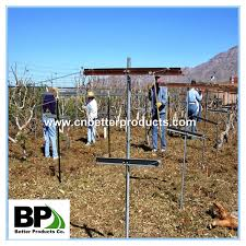 vineyard trellis end post vineyard trellis end post suppliers and