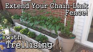 trellising extending a chain link fence for your garden youtube