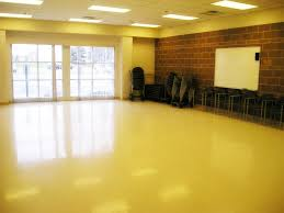 party room for rent room rentals chaska parks and recreation department