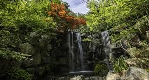 colorado u s japanese gardens visit illinois illinois usa