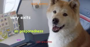 Doge Meme - doge meme page 17