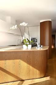 Curved Kitchen Islands by 264 Best Kitchen Images On Pinterest Architecture Kitchen And
