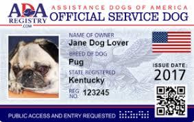 Comfort Pet Certification Emotional Dog Information Service Dog Registry Register Your