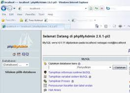 cara membuat website di internet share online cara membuat website offline web local dengan xp