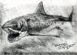 sco artist u0027s prints welcome to mike v schultz shark city ozark