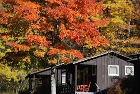 cabin and cottage rentals on lake fontana bryson city north