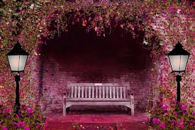 wallpaper cute house beautiful flower house hd nature wallpapers for mobile and desktop