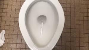 Diplomat Toilet 226 Two Vintage Eljer Sanus Toilets And Eljer Correcto Urinals