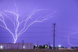things that look like trees lightning tree branches lazer