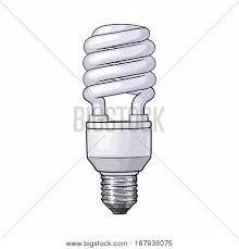 fluorescent energy saving spiral vector u0026 photo bigstock