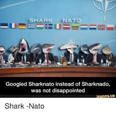 Sharknado Meme - shark nato chairman asg googled sharknato instead of sharknado was