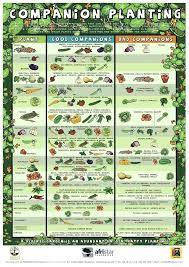 How To Plan A Garden Layout Raised Garden Bed Planner Vegetable Garden Layout 4 8 Raised