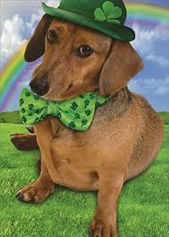 amazon com weinerful st patrick u0027s day recycled paper greetings