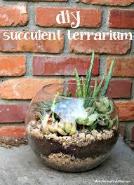 succulent terrarium in a clear glass bubble bowl