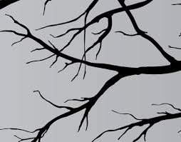large vinyl decor sticker wall mural art tree top branches living categories