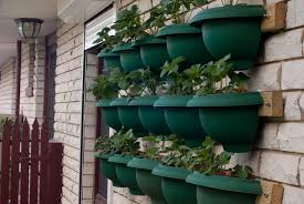 vertical vegetable gardening ideas pictures considerable media